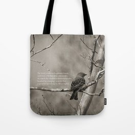 the-quest-image-and-poetry-bags.jpg